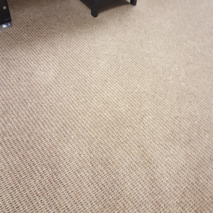 Cleaned Carpet after Piling up and Hot Extraction